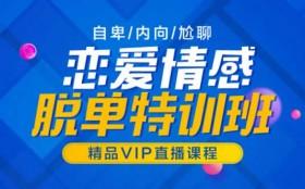 山本教育素云12期《恋爱VIP内部课》32节视频课程