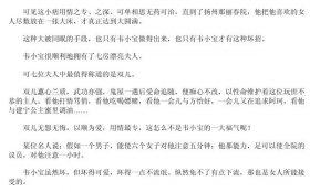 韦小宝的混世法宝 PDF电子书